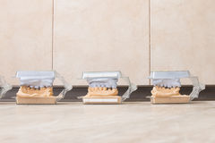 Tand- murbruk för rollbesättninggipsmodeller royaltyfria foton