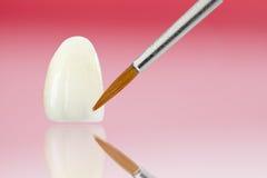 Tand- sjukvård royaltyfri foto