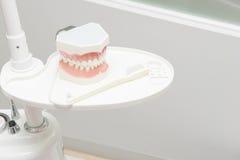 Tand- studiemodell i tand- kliniktabell Arkivbilder