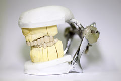 Tand- tandläkareobjekt Royaltyfri Bild