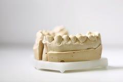 Tand- tandläkareobjekt Royaltyfri Foto