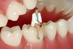 tand- tidsbeställning Arkivbilder