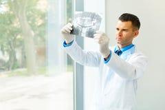 Tandarts Arts Looking bij Röntgenstraal bij het Ziekenhuis stock foto
