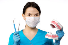 Tandarts met Hulpmiddelen Het concept van tandartsThe tandheelkunde, het witten royalty-vrije stock foto