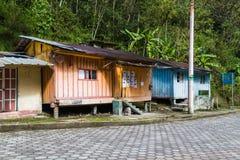Tandayapa, Ecuador stock images