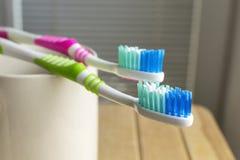 Tandborstar i den vita koppen Arkivbild