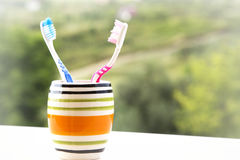 Tandborstar i exponeringsglas Arkivbild