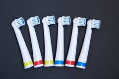 tandborste Fotografering för Bildbyråer