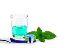 Tandborste och munvatten, tand- hygien för begrepp Fotografering för Bildbyråer