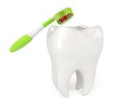 Tandborste och tand Arkivbild