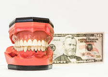 Tanddiegebitten op wit worden geïsoleerd Royalty-vrije Stock Foto's