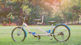 Tandem bicycle in the park Stock Image