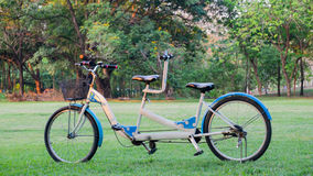 Tandem bicycle in the park Royalty Free Stock Photos