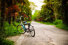 Tandem bicycle beside path Stock Images