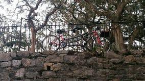 Tandem bicycle Royalty Free Stock Photos