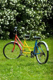 Tandem bike. Picture of tandem bike in the park Royalty Free Stock Image