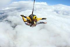 Tandemt hopp Hoppa med fritt fall i den blåa himlen royaltyfri fotografi
