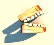 Tanden en gommen, tandheelkunde, het tand schoonmaken, mondelinge hygiëne Royalty-vrije Stock Afbeelding