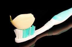 Tandenborstel met een plak van knoflook Royalty-vrije Stock Foto's
