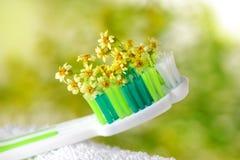 Tandenborstel met uiterst kleine bloemen Stock Afbeeldingen