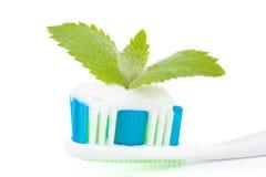 Tandenborstel, tandpasta en bladeren van munt Royalty-vrije Stock Afbeelding