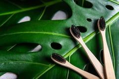 Tandenborstels van het Eco de vriendschappelijke bamboe stock fotografie