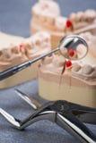 Tandform med tand- kirurgisk tång Royaltyfri Bild