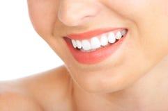 tandkvinna Royaltyfri Foto