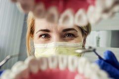 Tandläkare över den öppna tålmodiga munnen för ` som s ser i tänder Muntlig omsorg I Royaltyfri Fotografi