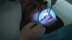 Tandläkare på arbete i kontoret En kvinnlig doktor undersöker tänderna och käkarna av en manlig patient stock video