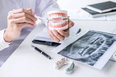 Tandläkarehandinnehav av käkemodellen av tänder och lokalvård som är tand- med det tand- hjälpmedlet royaltyfria foton