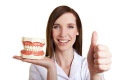 tandläkareholdingen tumm upp Arkivfoto