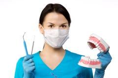 Tandläkaren med bearbetar TandläkareThe begrepp av tandläkekonst som gör vit royaltyfri foto