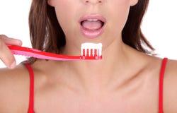 tandläkarerenhet royaltyfria foton