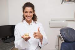 Tandläkarevisningtummar up och rymma munmodellen Royaltyfria Bilder