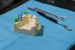tandläkekonststudenter på tandstudie Arkivbild