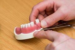 tandläkekonststudenter på tandstudie Arkivfoton