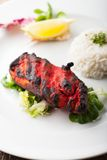 Tandoori. Indian grilled tandoori chicken with rice Royalty Free Stock Image