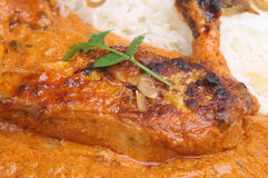 Tandoori Chicken Masala Stock Images