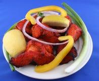 TANDOORI CHICKEN WITH SALAD. TANDOORI, INDIAN FOOD, CHICKEN AND SALAD Stock Photography