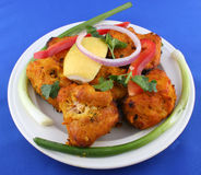 Tandoori fish. Tandoori style spicy fish baked in a clay oven Royalty Free Stock Images