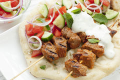 Tandoori Lamb Kebabs Stock Photography