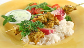 Tandoorie Chicken Kabobs royalty free stock images