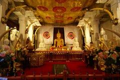 Tandoverblijfsel Sri Lanka Royalty-vrije Stock Afbeeldingen