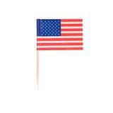 Tandpetareflagga USA Arkivfoto