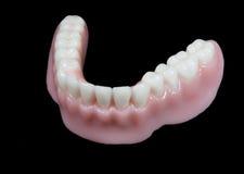 tandprotesen fäller ned tänder Arkivfoto
