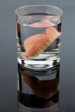 Tandproteser i vattenexponeringsglas arkivbild
