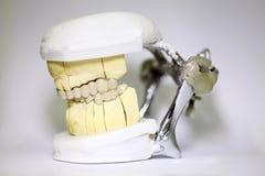 Tandtandartsvoorwerpen Royalty-vrije Stock Afbeelding