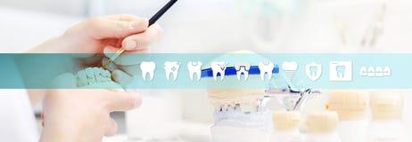 Tandtechnicushanden, tandenpictogrammen en symbolen, Webbedelaars die werken stock illustratie