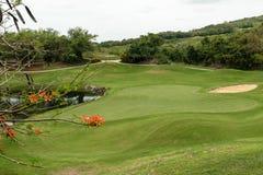 ?tang, arbres et soute de sable sur le beau paysage de terrain de golf images libres de droits